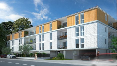 Ortolan investissement immobilier pinel toulouse for Acheter maison toulouse