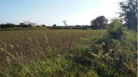 Achat terrain à bâtir à Landéda