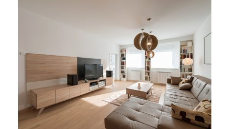 lois defiscalisation immobilière à Oberschaeffolsheim
