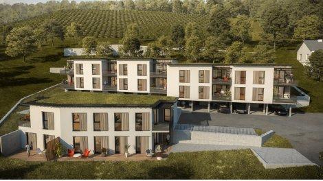 Appartement neuf Les Terrasses du Schlossberg à Kaysersberg