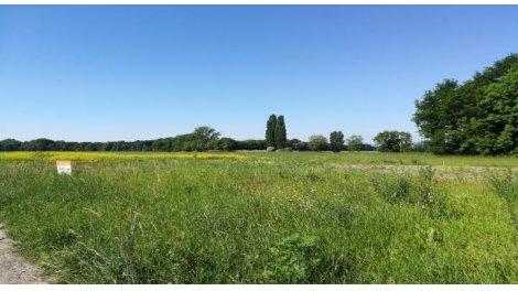 terrain à bâtir à Urschenheim